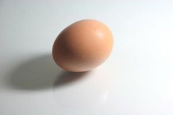 huevo-con-la-sombra_2913718